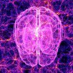 Связь между вашим кишечником и вашим мозгом